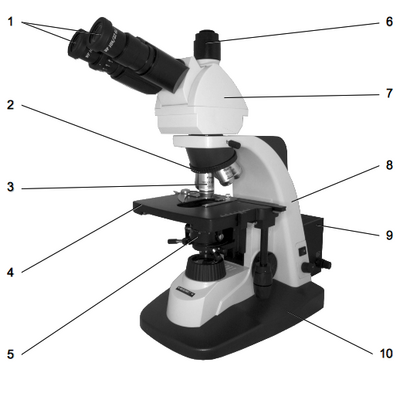 Общий вид микроскопа Биомед